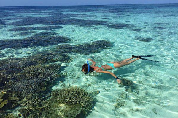 Snorkeling - Amor a Mar - Sal rei (4)